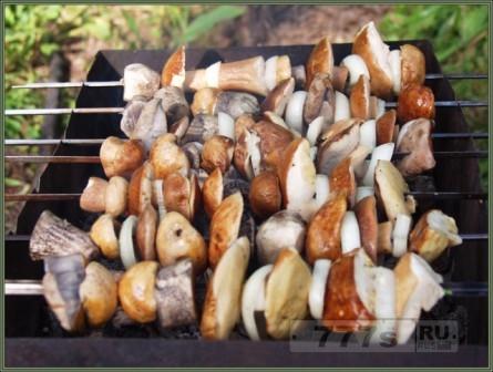 Походный грибной шашлык.