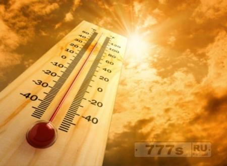 Как летом пережидать жару в квартире