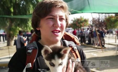Мальчик со щенком бежал из Сирии в Грецию