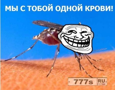 Средство от комаров – спокойный сон хозяевам!