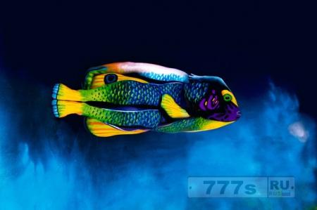 Если это не рыба, то кто?