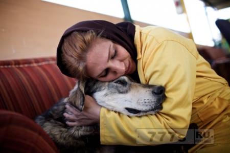 Первый в Иране приют для собак