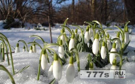 Так, когда же весна официально начнется?