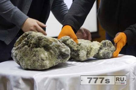 Нашли «пещерных львят» замерзших 12000 лет назад