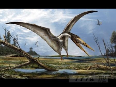 Птерозавры.