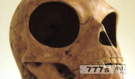 Таинственный череп с огромными глазами как полагают, «принадлежал инопланетянину»