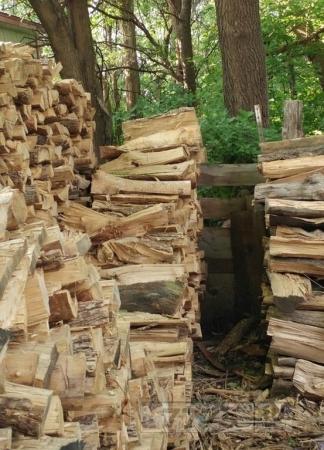 Можете ли вы найти кошку, которая спит на этой куче дров?