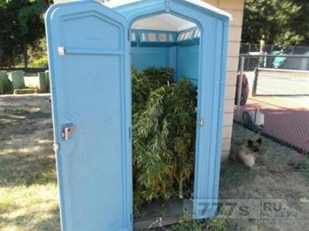 Человек в Орегоне нашел биотуалет, заполненный марихуаной