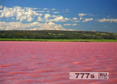 В России есть озеро, которое всегда становится розовым в августе