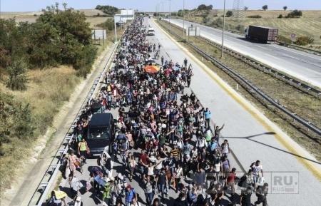 Тысячи чеченских иммигрантов штурмуют «безлюдную» границу между Польшей и Германией