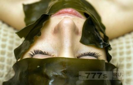 Интересно: ученый предлагает создать тандем человека и водорослей