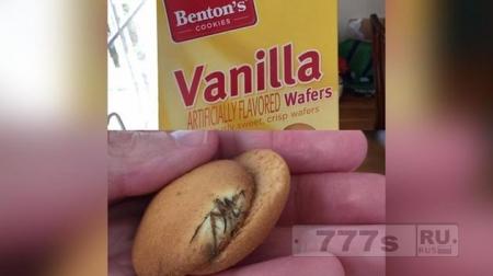 В печенье найден запеченный паук