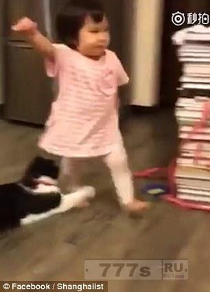 Злая кошка хватает лапкой маленькую девочку за ножку