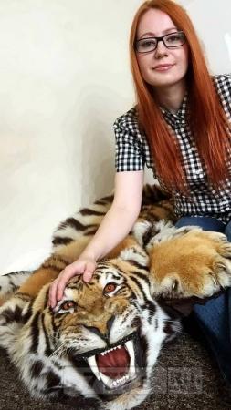 Женщина пытается продать незаконные шкуры тигров на eBay