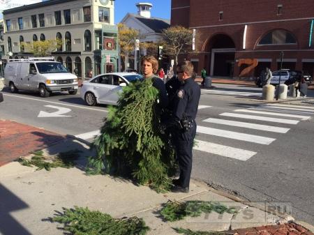 Арестован за то, что переоделся в ёлку и заблокировал дорогу