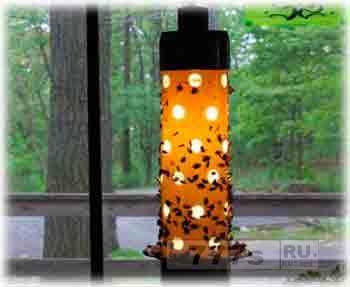 Наука: москиты почти не считают LED лампы привлекательными