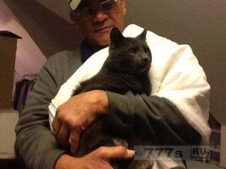 Этот 76-летний мужчина кормил бездомных кошек в своем районе каждый день в течение последних 22 лет.