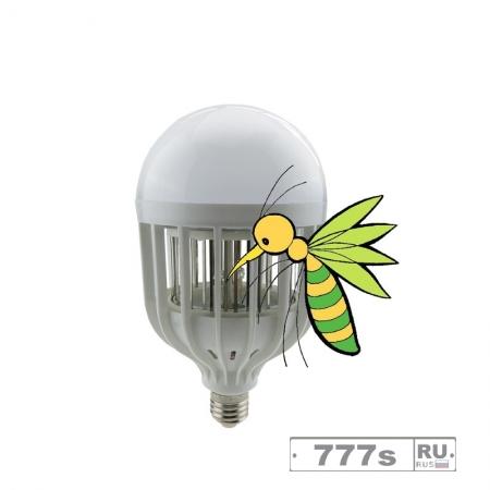 LED-лампы отрицательно влияют на хищных насекомых и паукообразных