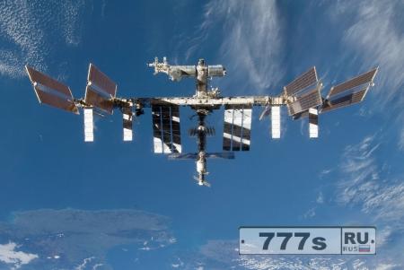 Водоросли выжили в условиях открытого космоса.