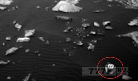 Существо, похожее на краба найдено на Марсе.