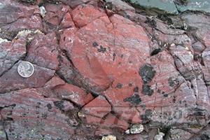 Обнаружены следы древнейших бактерий.