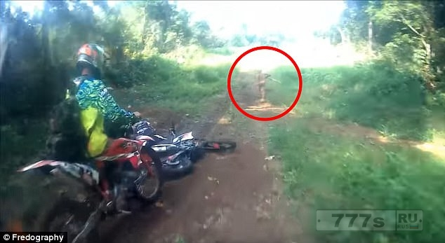 Таинственный маленький человечек был снят на камеру, бегущим по дороге и нырнувшим в заросли в Индонезии.