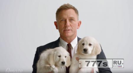 Тут не на что смотреть, просто Джеймс Бонд, он же Дэниел Крейг обнимается с щенками.