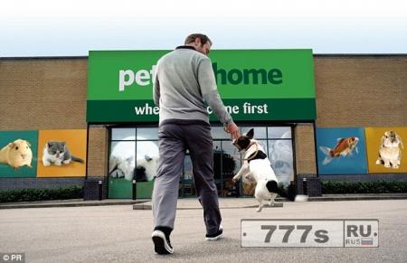 Взяли щенка? Помогите ему устроиться, - говорит хозяин магазина.