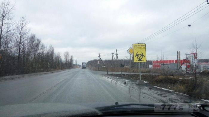 Северные районы Петербурга стали опасными для проживания