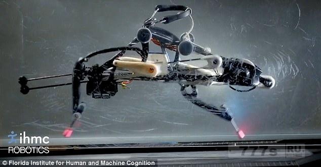 Причудливый двуногий робот, который чем-то похож на страуса может сбалансировать себя без какой-либо помощи.
