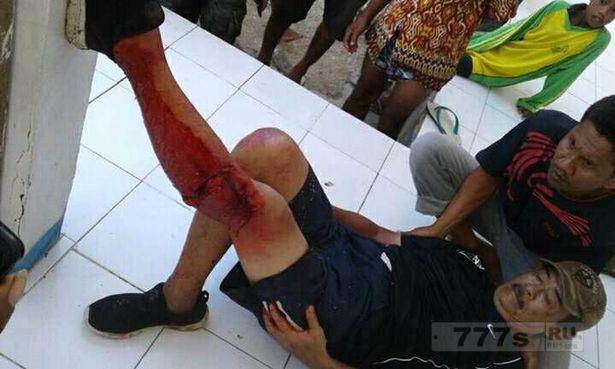 Комодский дракон 2,5 метра длиной напал на туриста в Индонезии.