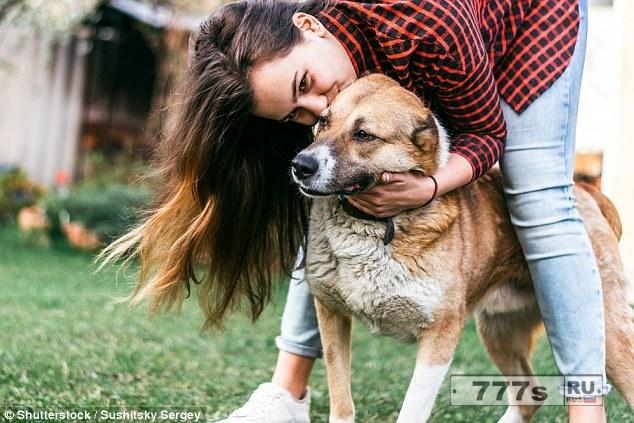 Люди могут «понять эмоции собаки от звука их рычания».