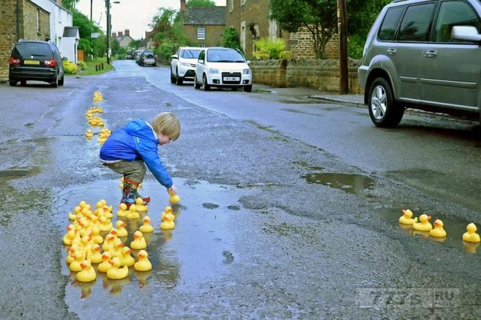 Малыш в Британии помогает протестовать против выбоин на деревенской дороге, наполняя их 100 резиновыми утками.