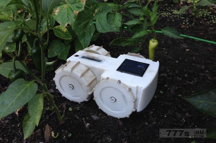 Тертилл робот садовник, работающий на солнечной энергии, сам прополет сорняки.