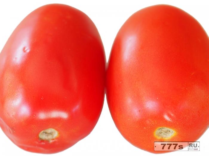 Как просто сохранить ваши томаты свежими подольше.