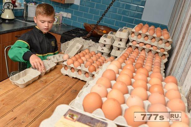 8-летний предприниматель, зарабатывающий £ 13 тыс. в год, продавая яйца, начал бизнеса с карманных 10 фунтов стерлингов.
