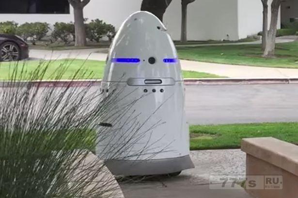 Робот охранник «совершает самоубийство», утопая в фонтане.