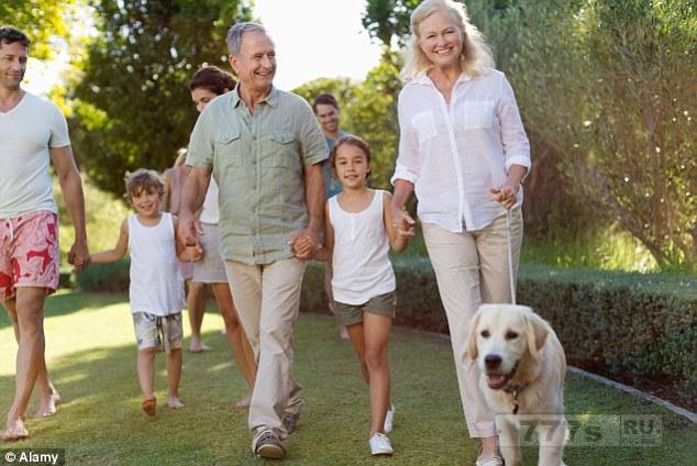Исследование показало, что выгул собак гораздо лучше, чем спортзал для пожилых людей.