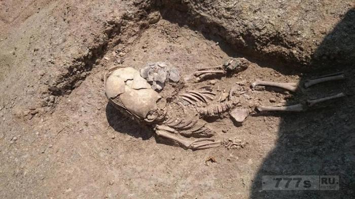 Нечеловеческого вида скелет мальчика со странным удлиненным черепом найден в крымской гробнице.