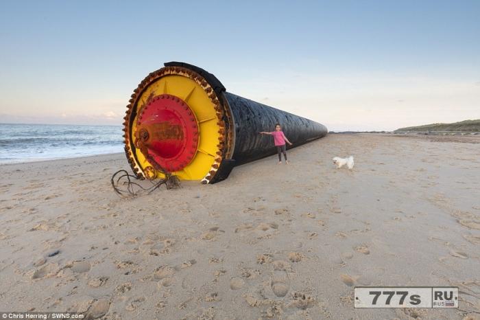 Гуляющие по пляжу были потрясены 450-метровой пластиковой трубой выброшенной на британский берег.