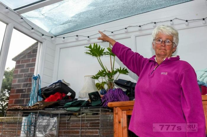 60-летняя женщина, утверждает, что объект, с пролетающего самолета, разбил крышу в её теплице.