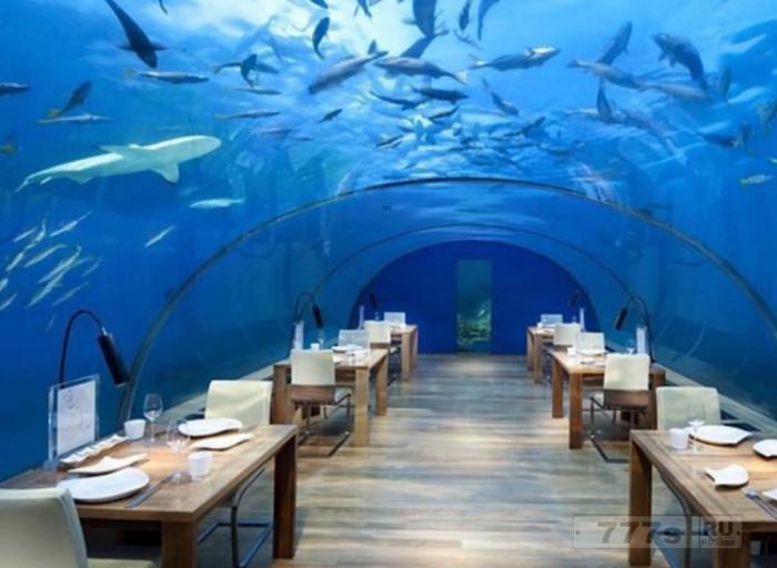 Вы должны сходить в первый в мире подводный ресторан.