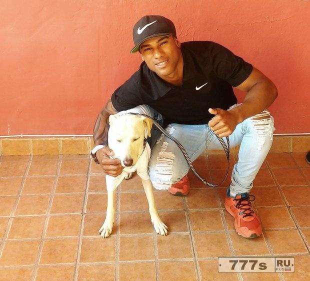 Бразилец приручил бродячую собаку, которая написала на него