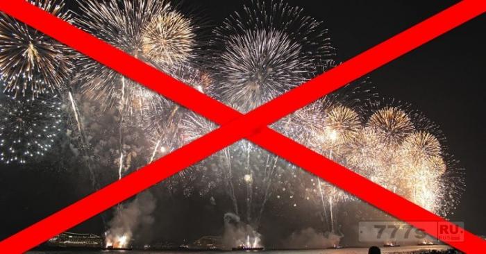 Тысячи людей подписали петицию о запрете фейерверков.