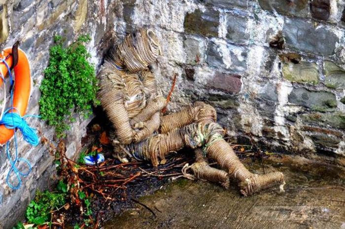 Тайна «мумифицированного человека» вымытого рекой.