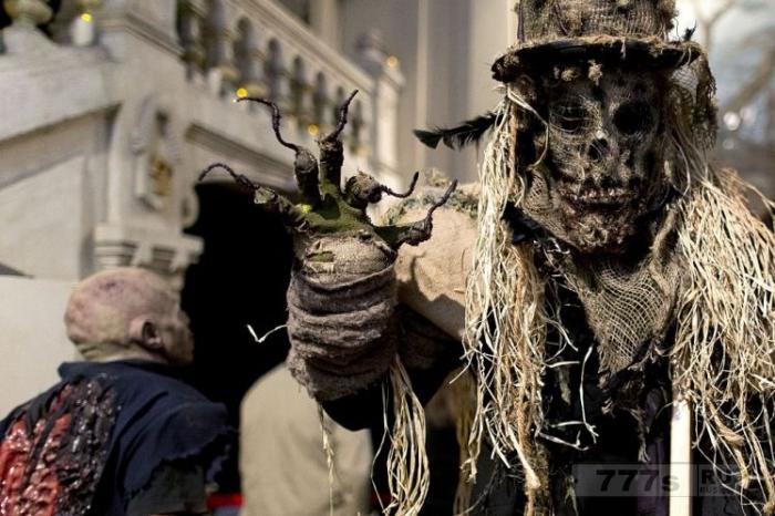 Лучшие украшения для вечеринок на Хэллоуин, чтобы напугать ваших друзей.