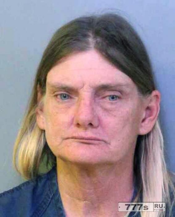 Женщина было арестована за вождение лошади в пьяном виде.