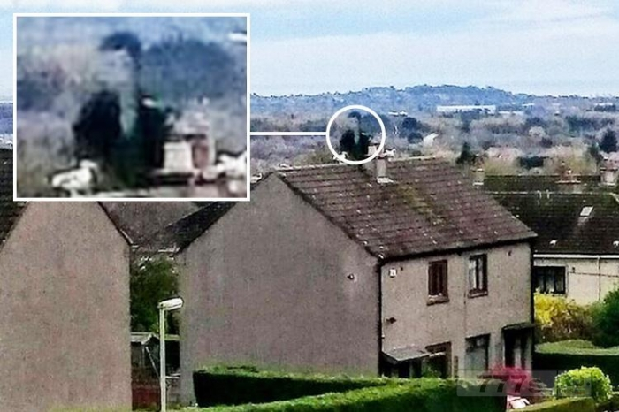 «Призрак Элвиса», сидящий на крыше рядом с дымоходом был сфотографирован дедушкой Данди.