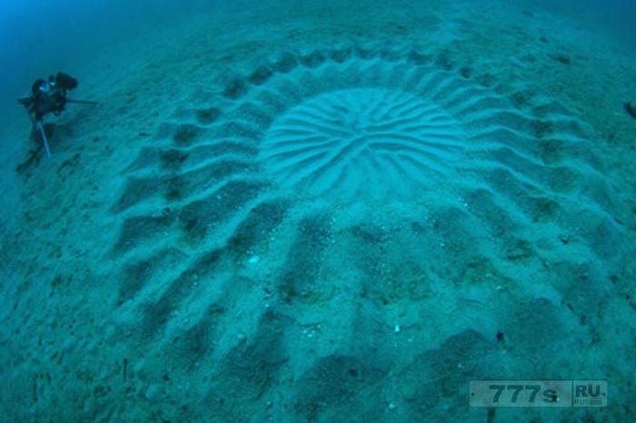 Загадки океана