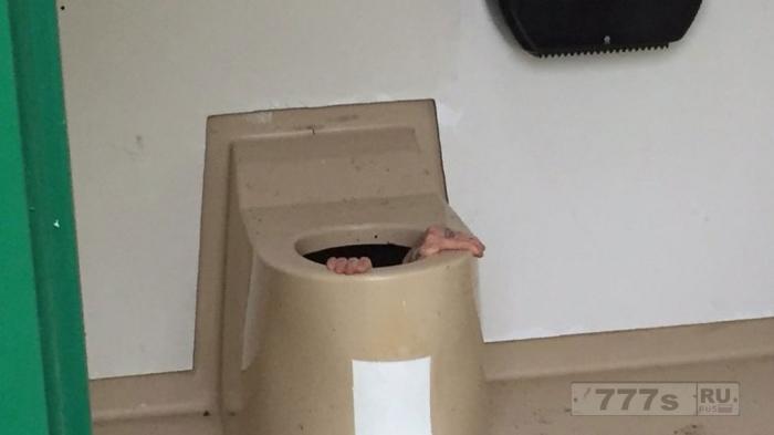 Освобождение из туалета